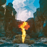 BONOBO_MIGRATION_ALBUM_500