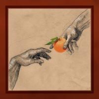 MyUglyClementine_AlbumCover_VitaminC_72dpi_500px